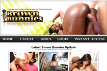 Brown Bunnies Review
