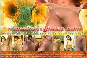 Trans Pantyhose